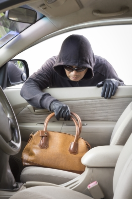 thief stealing purse