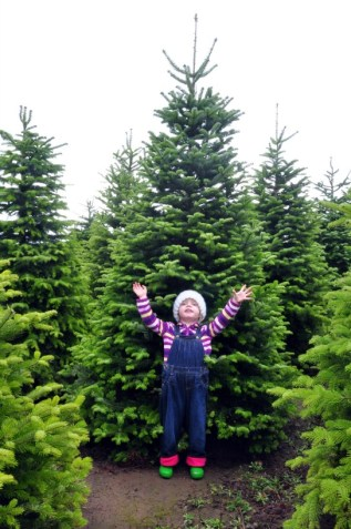 kid in front of christmas tree