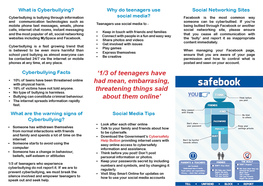 Cyberbullying Brochure Luke's Journey
