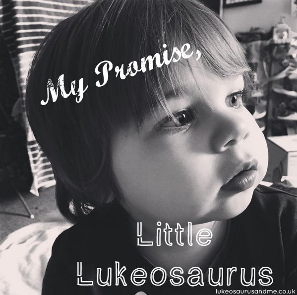 A promise to my nearly 2 year old son, emotional mummy time! lukeosaurusandme.co.uk