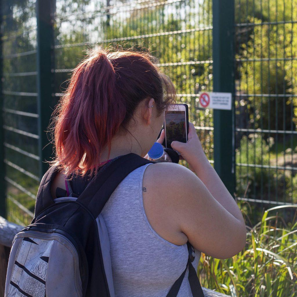 Visit to the Isle Of Wight zoo, Sandown - full review at https://lukeosaurusandme.co.uk