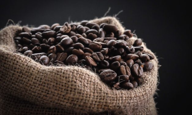The Exciting Adventures of the Humble Fair Trade Coffee Bean