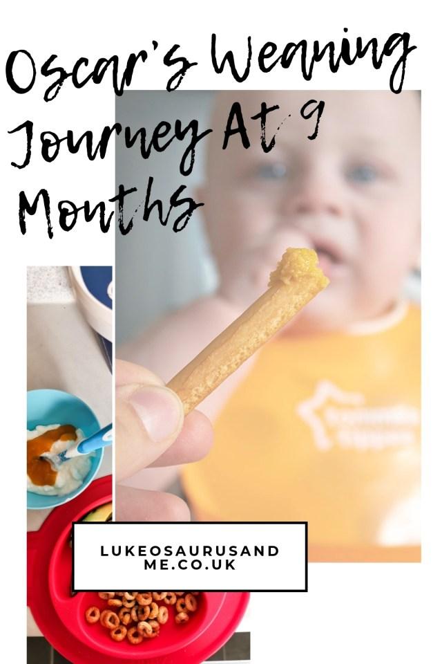 Oscar's Baby Led Weaning Journey At 9 Months at https://lukeosaurusandme.co.uk