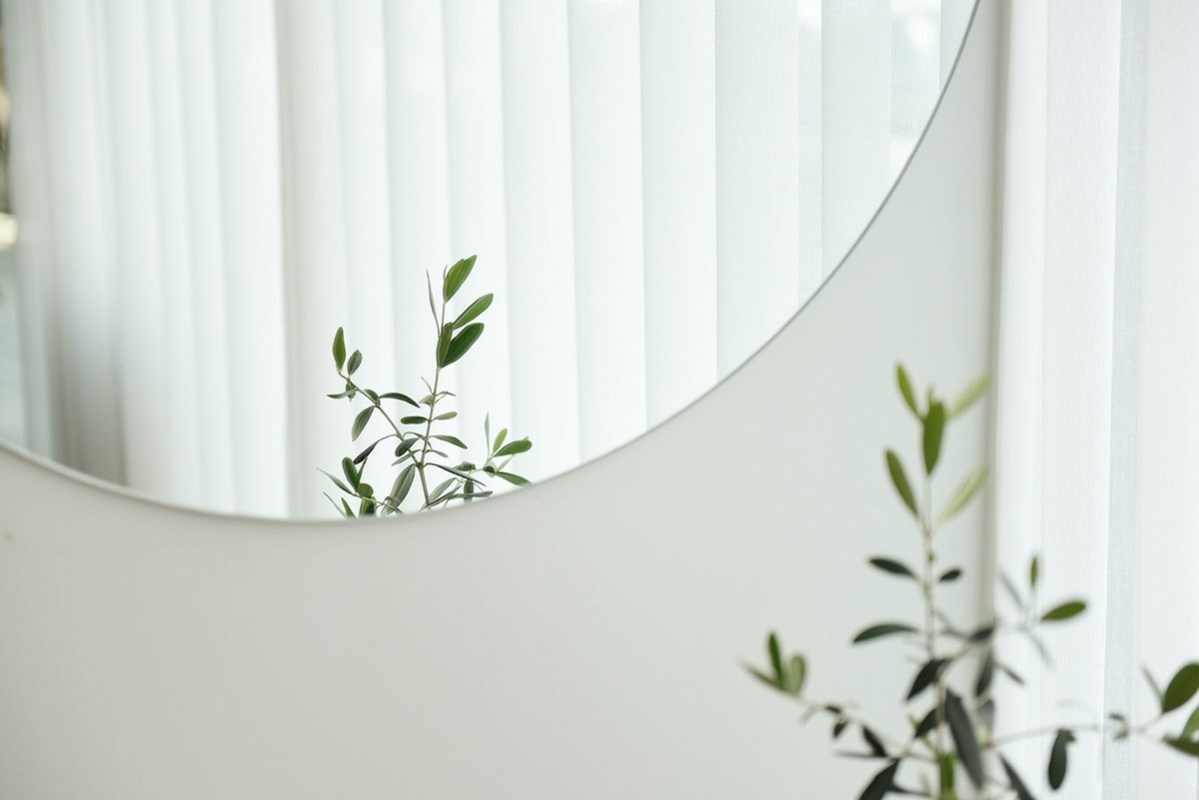 a plant reflecting in a mirror. stylish and practical homr