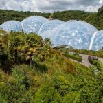 A veiew of The Eden Project's rainforest from on top of the hill, near the visitor centre.