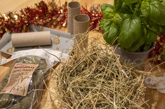 Toilet roll tubes, basil, rabbit treats and hay laid out on a table to create homemade rabbit treats for Christmas presents for rabbits