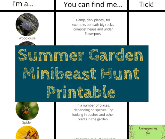 Summer Garden Minibeast Hunt Printable screenshot for a blog post on educating children about minibeasts.