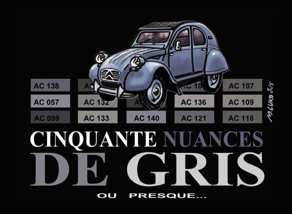 50-NUANCES-DE-GRIS