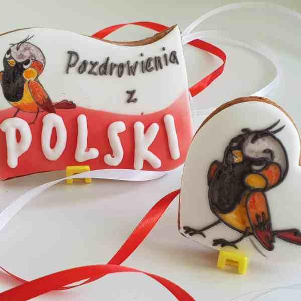 lukrowane ciasteczka na zamówienie, pierniczki wróbel Ćwirek, przygód kilka wróbla Ćwirka - Basia sweets