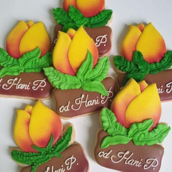 Koniec roku szkolnego, podziękowanie dla nauczyciela, Lukrowane ciasteczka Basia sweets