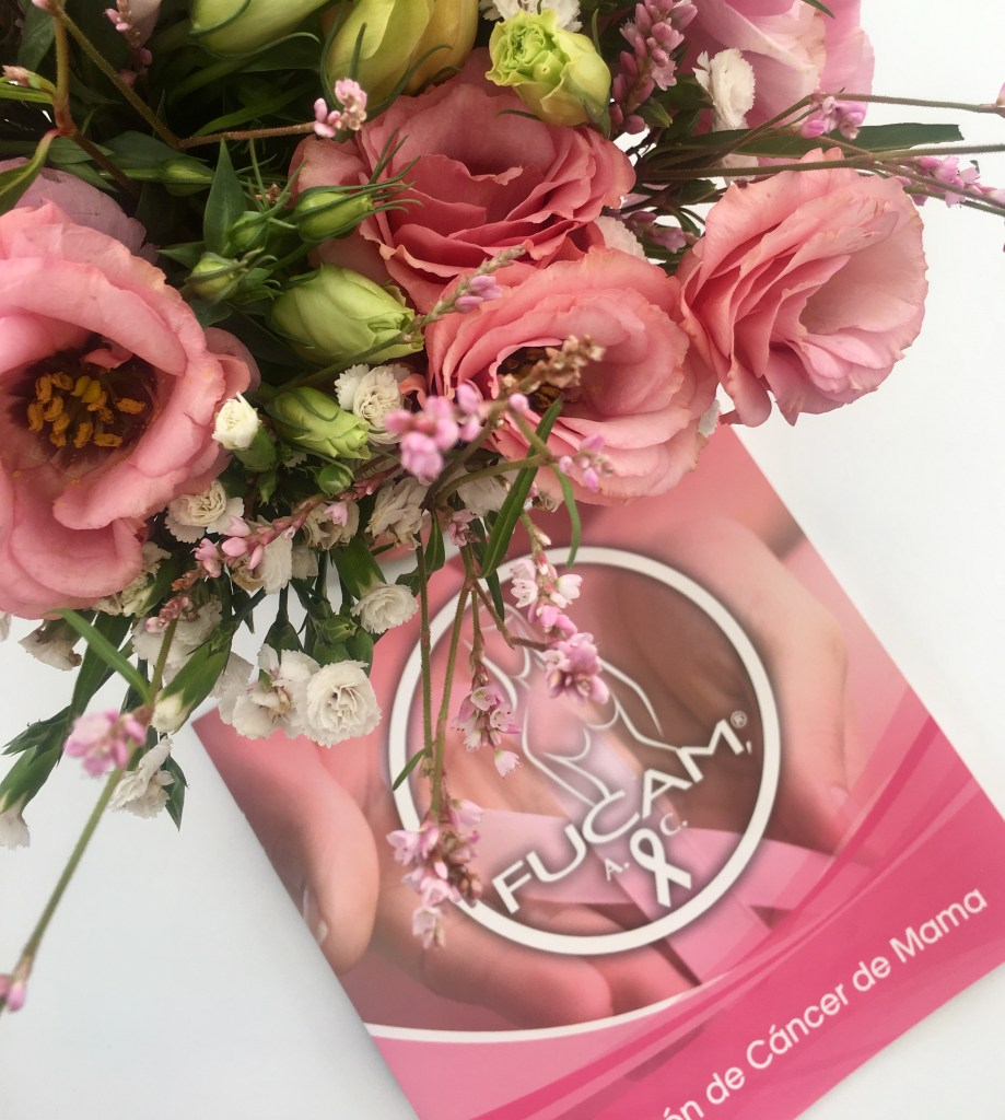Fashion News: Productos Que Apoyan El Mes Rosa + Gucci Vetará Las Pieles