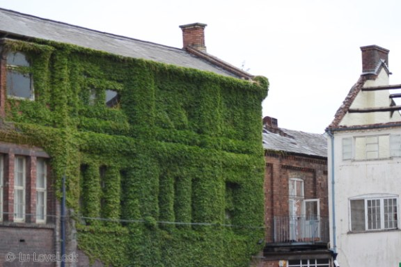 Building covered in a vine