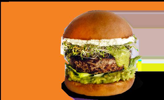 burger-greenbird