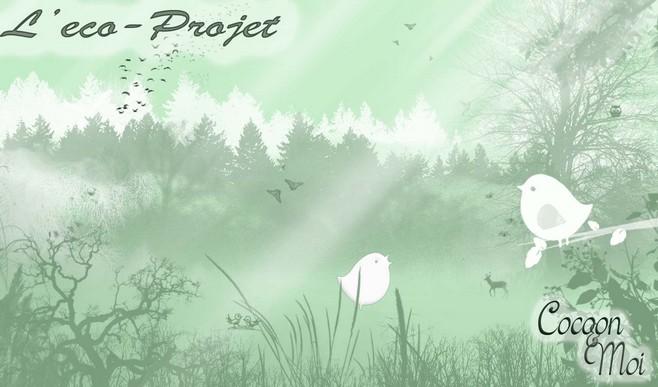 eco-projet2