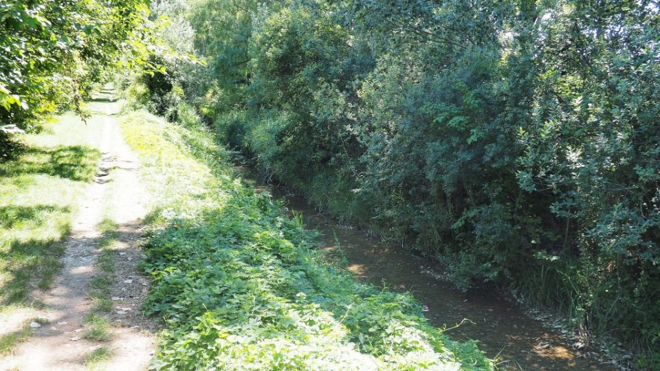 Sentier de la Découverte - Ecoutay