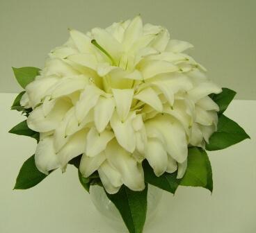 Гламелия из белых лилий