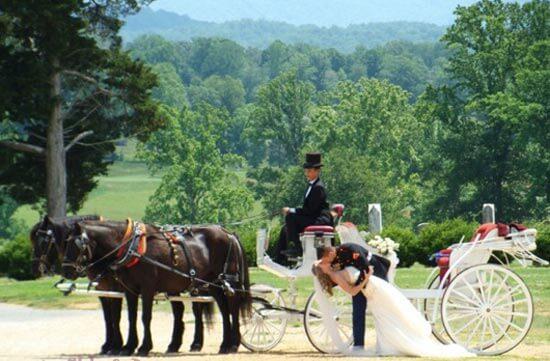 свадебная карета в сказочном стиле