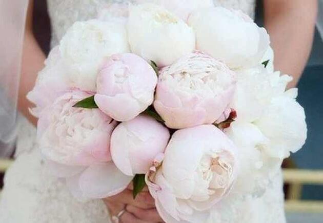 Красивый букет из белых и розовых пионов