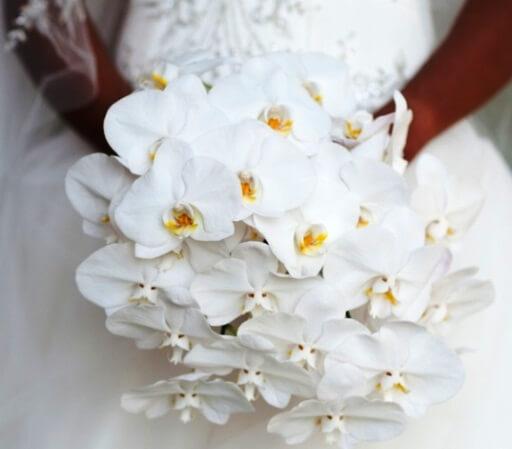 свадебный букет белых орхидей