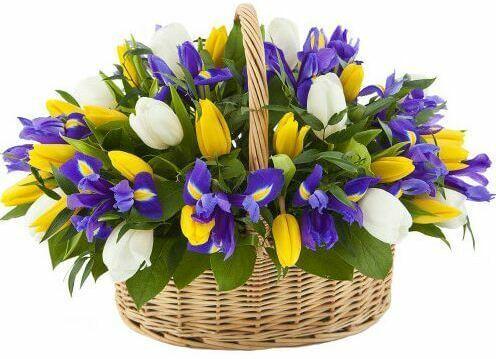 корхзина с тюльпанами разноцветными
