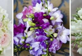 Свадебный букет из фрезий: самые оригинальные варианты