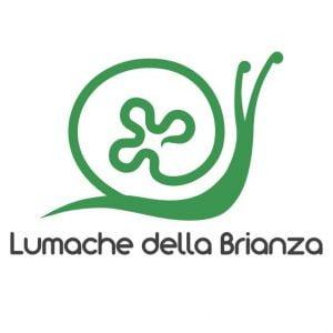 Lumache della Brianza