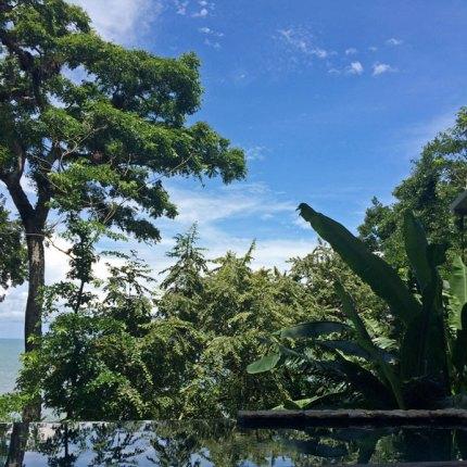 Isla-Palenque199