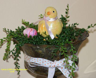 Easter Chicken Closeup