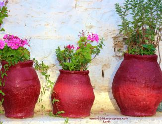 Flower Clay Pots