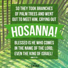 Scripture Sunday: Palm Sunday