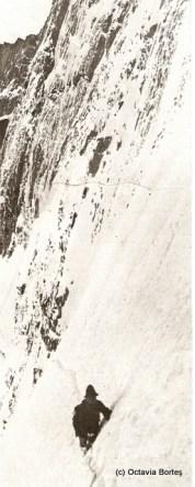 Premiera unei fețe nordice în 1931