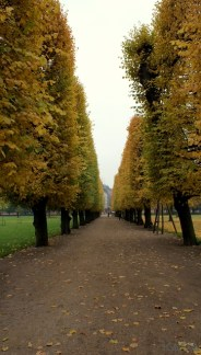 016-Copenhaga-Parcul-Palatului-Rosenborg