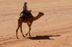 Wadi_Rum_0149-2