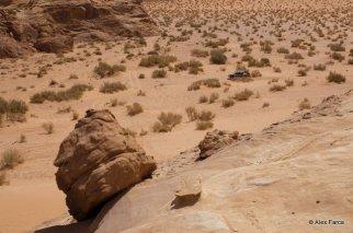 Wadi_Rum_0677