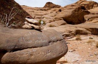 Wadi_Rum_0683