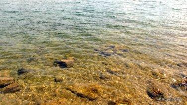 Apa limpede de Dunare