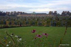Potsdam Sanssouci_DSC9367