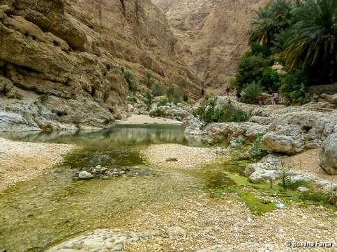 Oman_8546