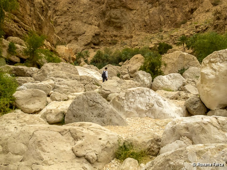Oman_8549