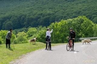 Transylvania-by-bike-2276