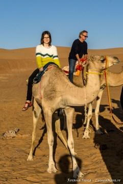 Plimbare cu cămilele in deșert