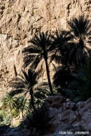 Oman-Wadi-Shab-9076