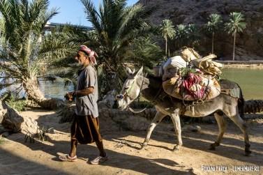 Oman-Wadi-Shab-9111