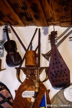 Muzeul Vasile Găman