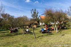 Marginimea-Sibiului-9936