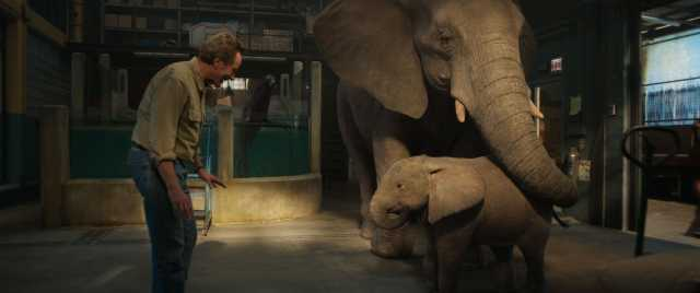 Bryan Cranston as Mack, Stella (voiced by Angelina Jolie), and Ruby (voiced by Brooklynn Prince) in Disney's THE ONE AND ONLY IVAN, based on the award-winning book by Katherine Applegate and directed by Thea Sharrock. Photo courtesy of Disney. © 2020 Disne