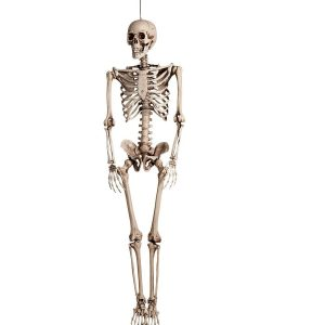 Kæmpe skelet
