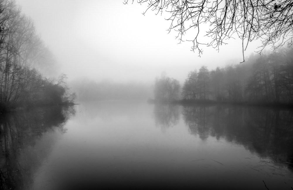 Landschap in de mist #1