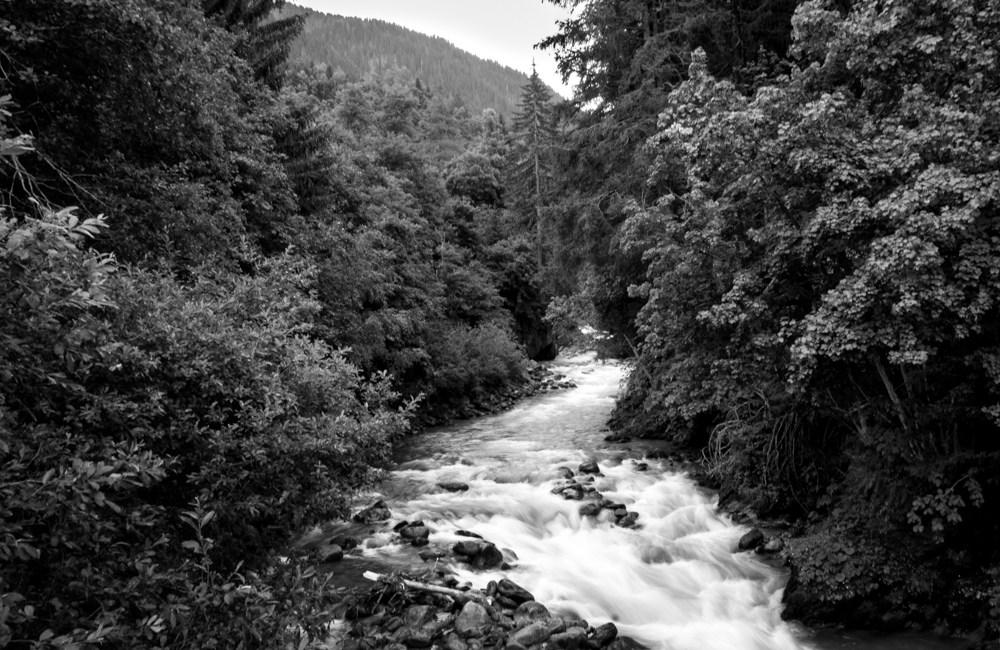 Wonders of nature #19