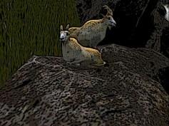 Mountain beasts